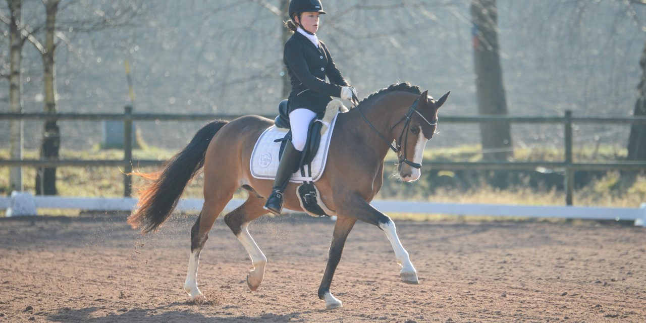 Svenska Mästerskapen Ponny
