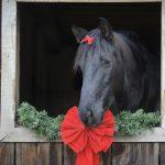 Jul i stallet!