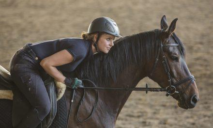 Hur säker är du med häst?
