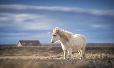 Testa din kunskap om enhörningen!