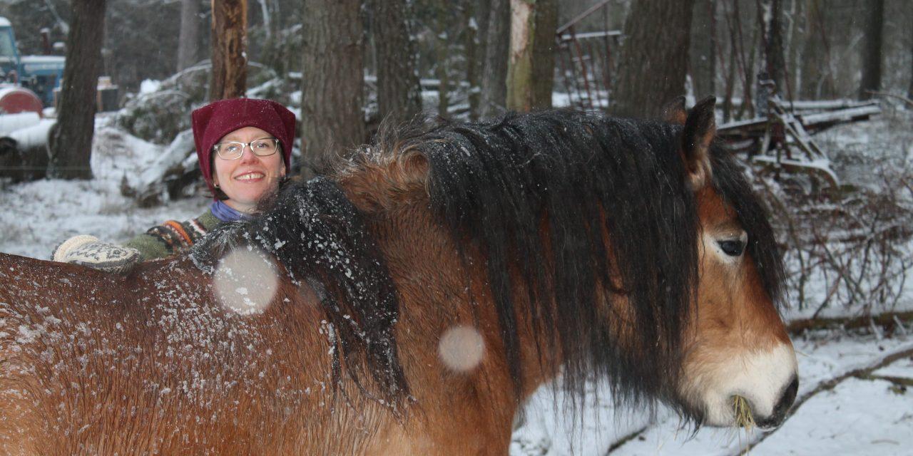 """Jenny Yngvesson: """"Så får du hästen att gilla dig"""""""