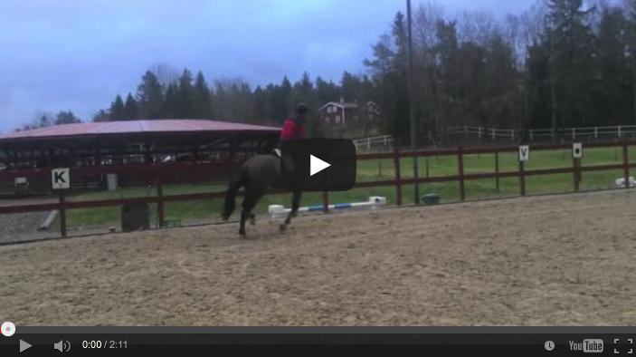 Video: Hur kan han sitta kvar?!