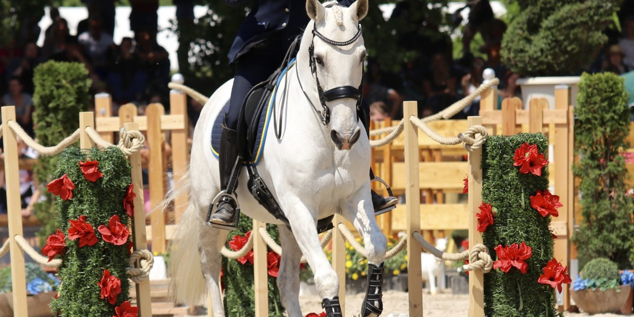 Kluriga hinder i Working Equitation