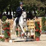 Kluriga hinder i Working Equitation