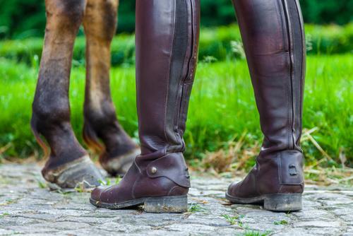 Vårda dina ridstövlar! Min Häst