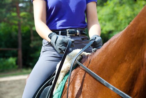 DEL 2. Rida ny häst – så gör du